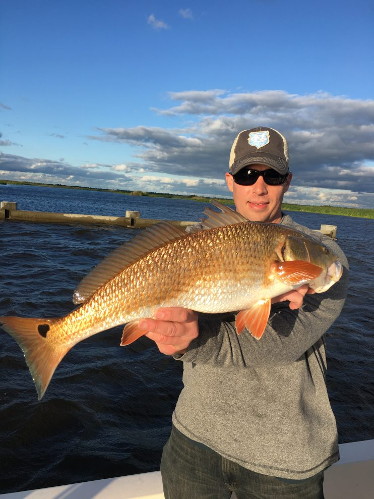 Redfish fishing charter in south louisiana with brock s for Louisiana fishing license online